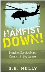 Hamfist down